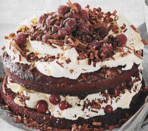 Schoko Cranberry Torte
